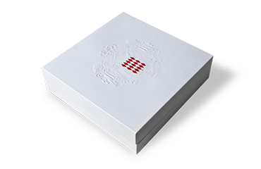 Geschenkverpackung bzw Bezugskartonage mit Einsatz